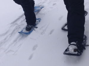 Snowshoeing in the Black Hills - snowshoe close up